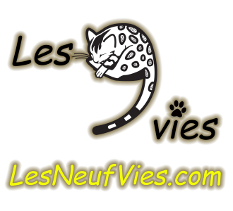 Picture of Bengal Cat - Les Neuf Vies Bengal